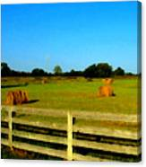 Hale Bales In Late Summer Canvas Print