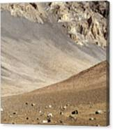 Haleakala Crater Floor Canvas Print