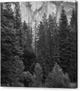 Half Dome In Monochrome Canvas Print