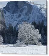 Half Dome In Winter Canvas Print