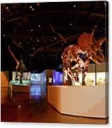 Hall Of Paleontology Canvas Print