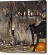 Halloween 2 Canvas Print