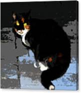 Halloween Cat Canvas Print