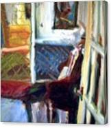 Hallways And Doorways Canvas Print