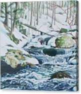 Hamburg Mountain Stream Canvas Print