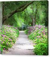 Hampton Park Path Canvas Print