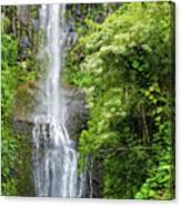 Hana Waterfall Canvas Print