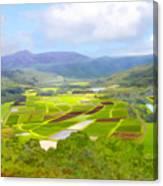 Hanalai Canvas Print