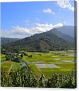 Hanalei River Overlook In Kauai Canvas Print