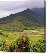 Hanalei Valley Panorama Canvas Print