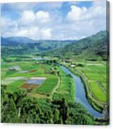 Hanalei Valley Taro Field Canvas Print