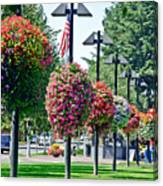 Hanging Flower Baskets In A Park Canvas Print