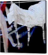 Hanging Garters  Canvas Print