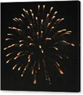 Happy 4th.from Palm Desert 7 Canvas Print