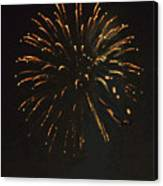 Happy 4th.from Palm Desert 8 Canvas Print
