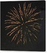 Happy 4th.from Palm Desert 9 Canvas Print