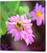 Happy Birthday Daisy Canvas Print