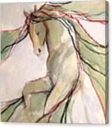 Happy Dancer Canvas Print