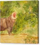 Happy Hippo Canvas Print