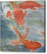 Happy Koi Canvas Print