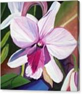 Happy Orchid Canvas Print