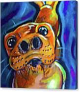 Happy Seal Canvas Print