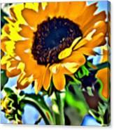 Happy Sunflower Canvas Print
