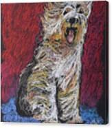 Happy The English Sheepdog Canvas Print