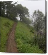 Happy Trail Canvas Print