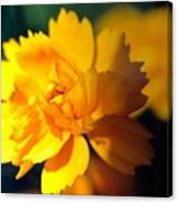 Happy Yellow Flower Canvas Print