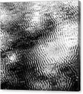 Haptics Canvas Print