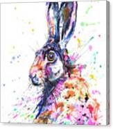 Hare In Grass Canvas Print