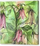 Harebell Canvas Print