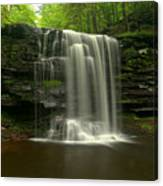 Harrison Wrights Forest Falls Canvas Print