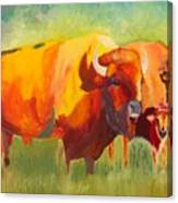 Hartsel Bison Family In Springtime Canvas Print