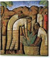 harvest, by Alfredo Ramos Martinez Canvas Print