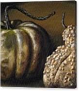 Harvest Gourds Canvas Print
