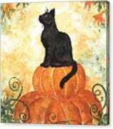 Harvest Kitty Canvas Print