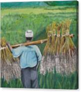 Harvest Canvas Print