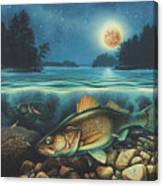 Harvest Moon Walleye 3 Extended Version Canvas Print