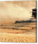 Harvesting Wheat 1336 Canvas Print