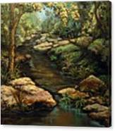 Harvey's Creek Canvas Print