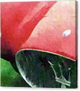 Hatched Maser Canvas Print