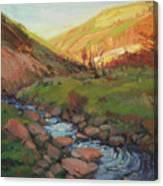 Hatley Gulch Canvas Print