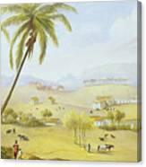 Haughton Court - Hanover Jamaica Canvas Print