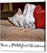 Have A Purrfect Christmas Canvas Print