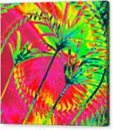 Hawaii Three O Canvas Print