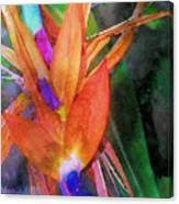 Hawaiian Abstract Canvas Print