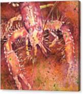 Hawaiian Lobster Canvas Print