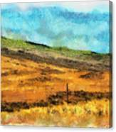 Hawaiian Pasture Canvas Print